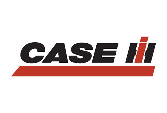 Our Client - Case I
